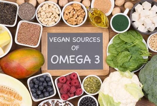 175 De omegavetzuren