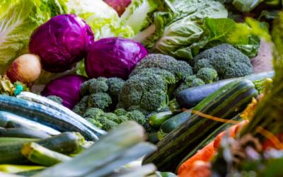 Sneller, goedkoper en betere gezonde voeding???